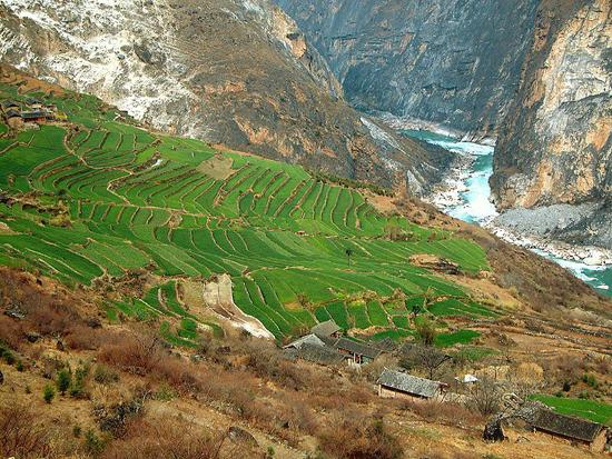 800px-Yunnan_Terraces