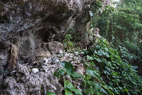 崖の下に人骨が散乱する。