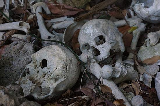 骸骨さん激写。野ざらしになっている。