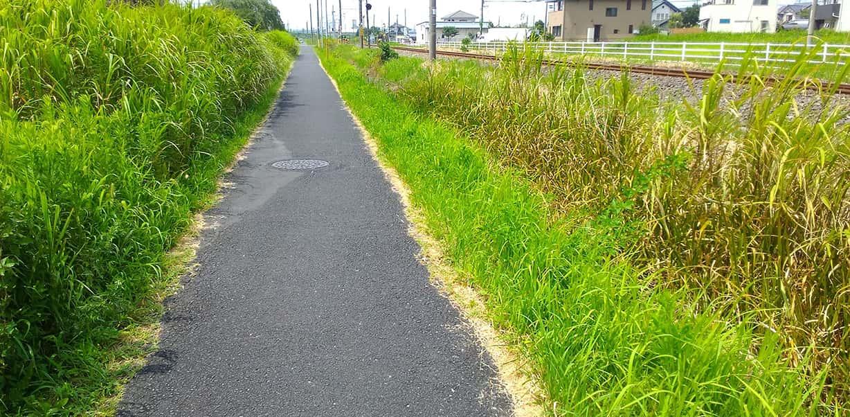 絵に描いたような田舎道を歩く。並走する東金線は単線
