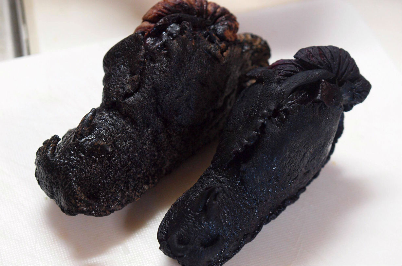 釜山プチ奇食旅行記 後編~アメフラシの刺身 この日本人頭おかしいのかなハセヨ