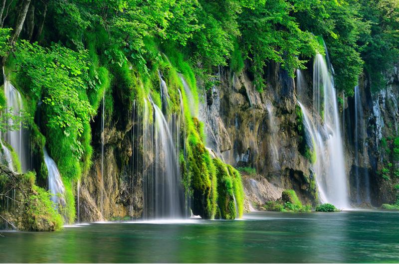 神秘的なクロアチアの自然遺産 ~プリトヴィッツェ湖群国立公園