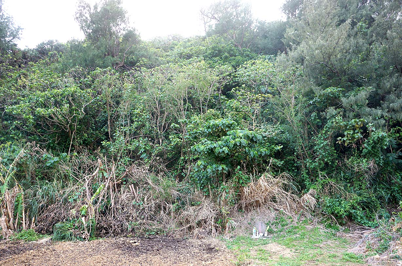 恐怖!謎の白骨洞穴発見!!宮古島の密林に古代人の墓は実在した!!
